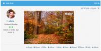 wpForo Embed Flicker